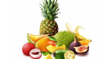 Top 5 giống cây ăn quả Thái Lan dễ trồng, giá bán cao